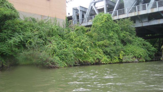 Harlem River.