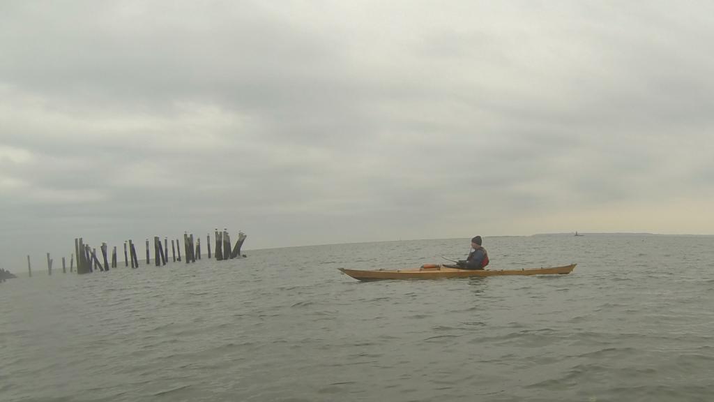Pilings at Swinburne Island.