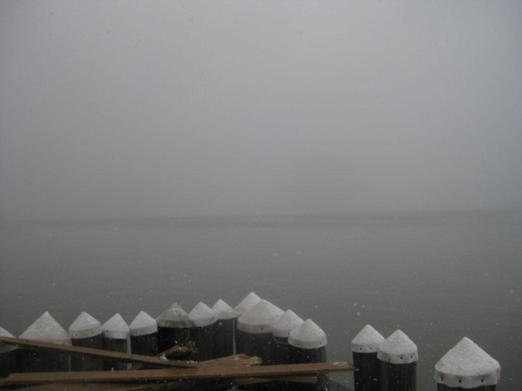 A Foggy Saint Patrick's Day.