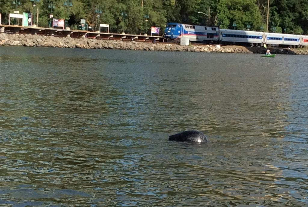 The Inwood Seal