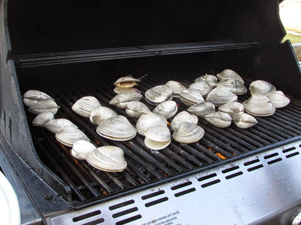 Clams at Sedge Island